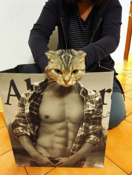 43048,1298219267,aber crombie and fitch cat model-450x599