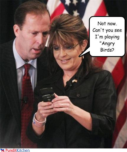 43048,1298902104,political-pictures-sarah-palin-angry-birds-not-now