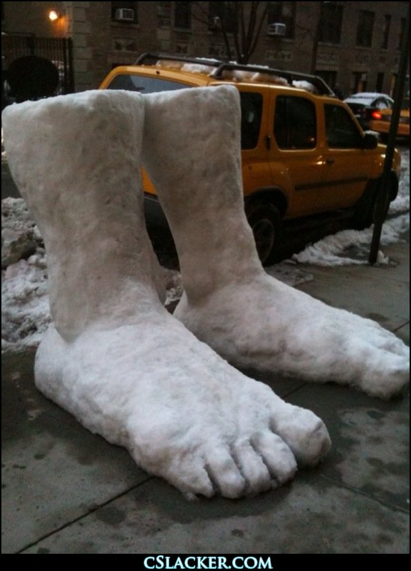 43048,1298986310,two feet of snow