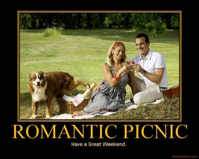 43048,1300238661,romantic-picnic-wtf-pee-happy-demotivational-poster-1236971787