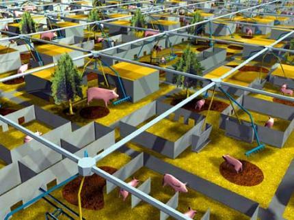 Der Acker Im Wolkenkratzer Landwirtschaft Der Zukunft Seite 4 Allmystery