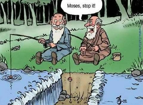 Humore montazhi dhe foto tjera humoristike - Faqe 2 Mg45298,1221949259,humor