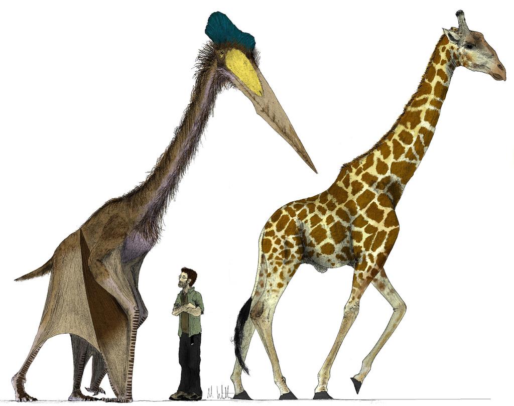 Riesentiere allmystery - Dinosaur volant ...