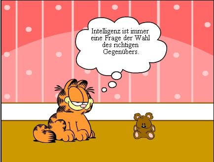 Intelligenz Bei Tieren