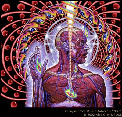 alex grey wallpaper. alex grey wallpaper. alex grey wallpaper. art grey