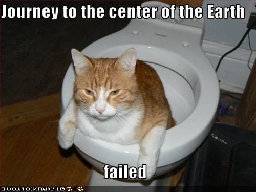 uh43048,1251657278,funny-pictures-cat-is-in-toilet