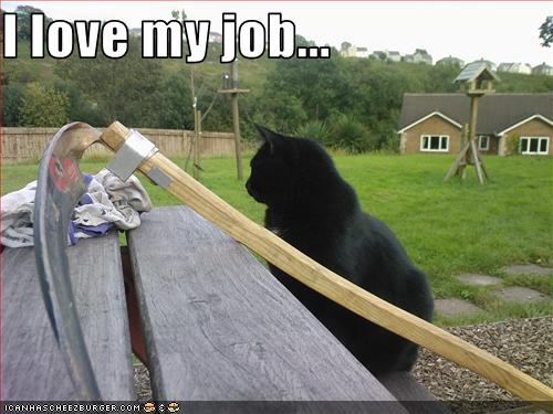 uh43048,1254671073,funny-pictures-basement-cat-loves-his-job