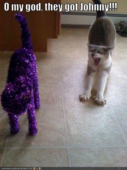 uh43048,1255766190,funny-pictures-cat-sees-cat-made-of-tinsel1
