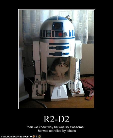 uh43048,1256125802,funny-pictures-cat-controls-r2d2