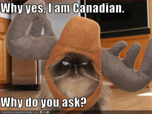 uh43048,1257445341,funny-pictures-cat-is-canadian
