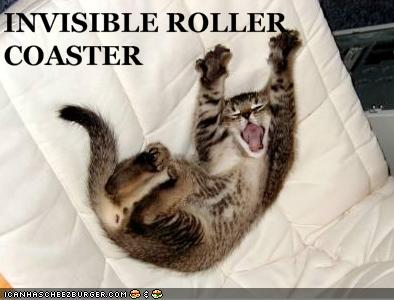 uh43048,1257445371,funny-pictures-kitten-is-on-invisible-rollercoaster2