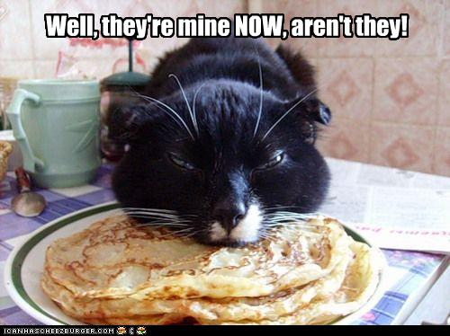 uh43048,1257445424,funny-pictures-cat-eats-your-pancakes