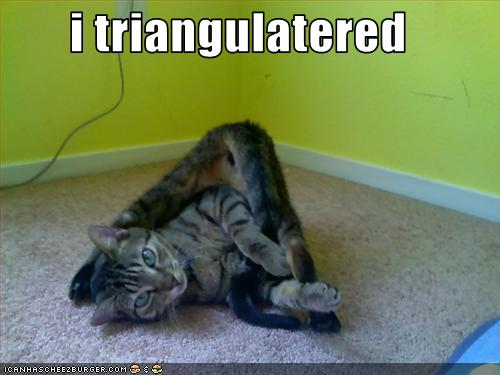 uh43048,1257849048,funny-pictures-cat-is-in-triangle