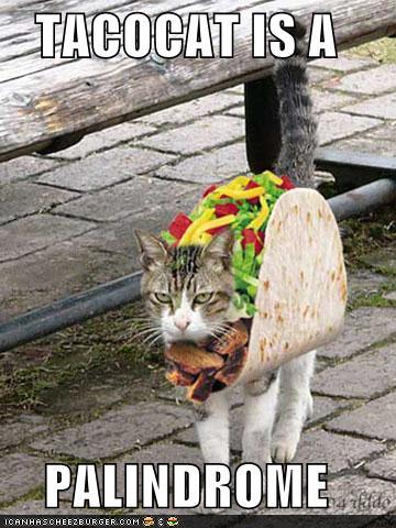 uh43048,1259253497,funny-pictures-taco-cat-is-a-palindrome