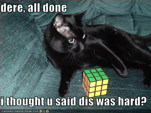 uh43048,1259698547,funny-pictures-cat-finished-rubiks-cube