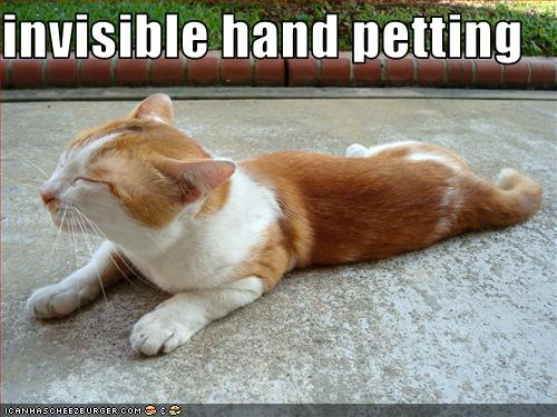 uh43048,1259698685,funny-pictures-cat-receives-invisible-pettings