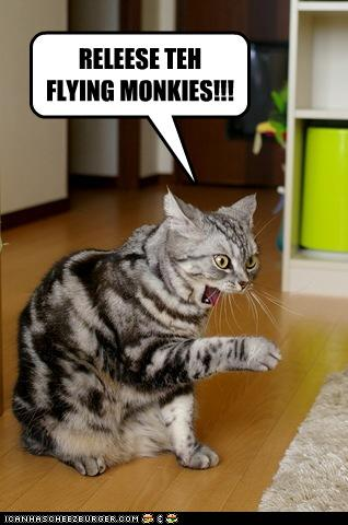 uh43048,1260381758,funny-pictures-cat-commands-flying-monkeys