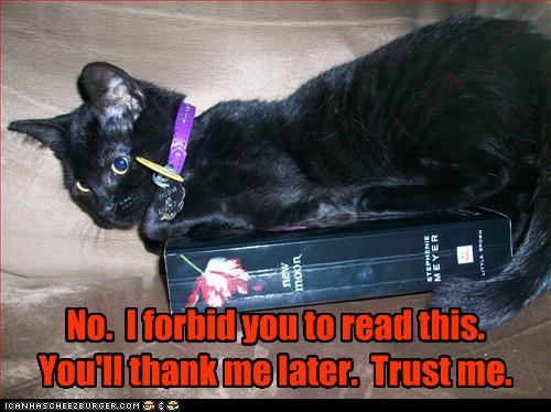 uh43048,1260381935,funny-pictures-cat-does-not-want-you-to-read-book