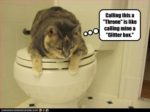uh43048,1261489232,funny-pictures-cat-insults-your-toilet