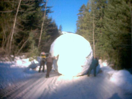 uh43048,1262435299,Giant-Snowball