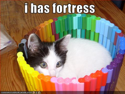 uh43048,1265222018,funny-pictures-cat-has-fortress1