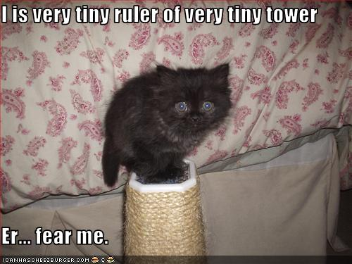 uh43048,1265222048,funny-pictures-kitten-rules-a-tower