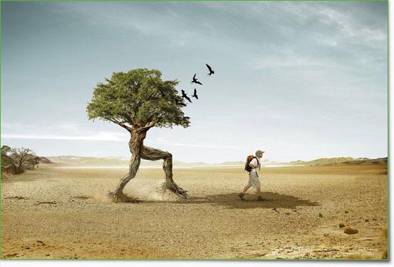 An den Beitrag angehängtes Bild: http://www.allmystery.de/dateien/uh43048,1265802170,photo-manipulation-38.jpg