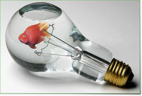 An den Beitrag angehängtes Bild: http://www.allmystery.de/dateien/uh43048,1265802284,photo-manipulation-51.jpg