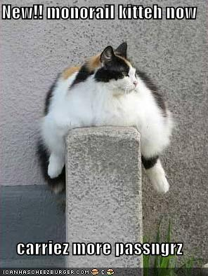 uh43048,1266960069,funny-pictures-fat-monorail-cat