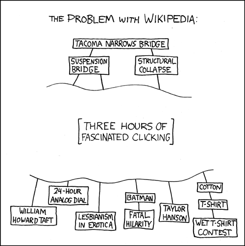 uh43048,1268084140,the problem with wikipedia