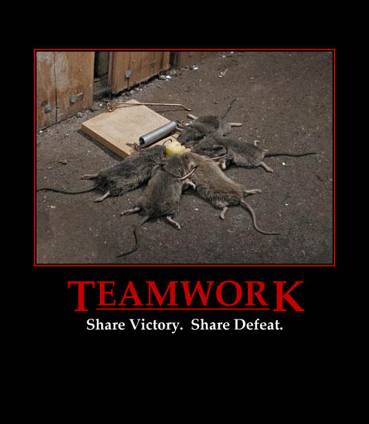 uh43048,1268143707,teamwork rats