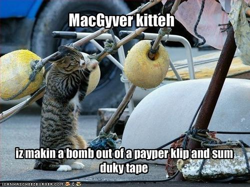 uh43048,1268177239,funny-pictures-your-cat-is-making-a-bomb