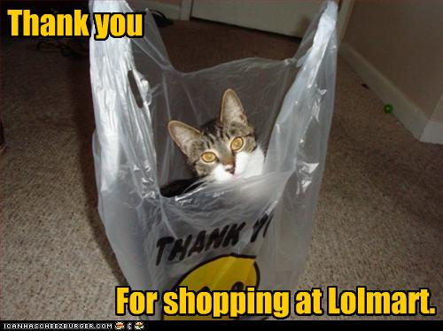 uh43048,1268297006,funny-pictures-cat-says-thank-you