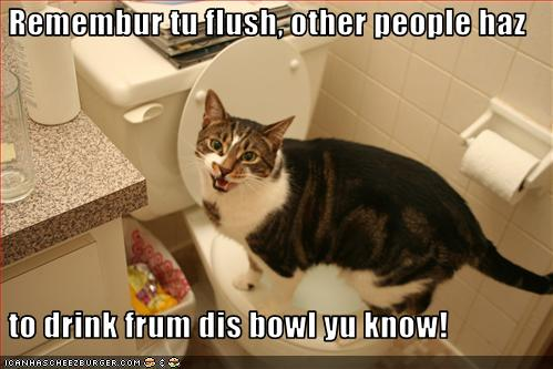 uh43048,1268297083,funny-pictures-cat-asks-you-to-flush