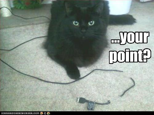 uh43048,1268297168,funny-pictures-cat-does-not-see-your-point