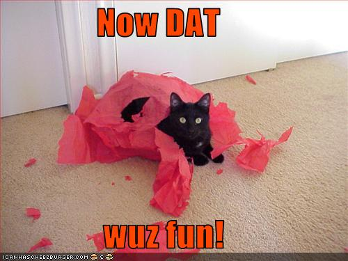 uh43048,1268297235,funny-pictures-cat-has-had-fun