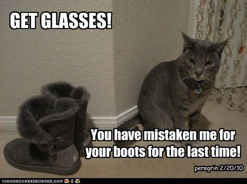 uh43048,1268297262,funny-pictures-cat-looks-like-boots