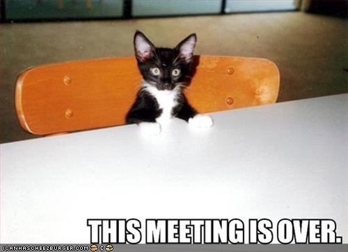uh43048,1268297431,funny-pictures-kitten-ends-meeting2