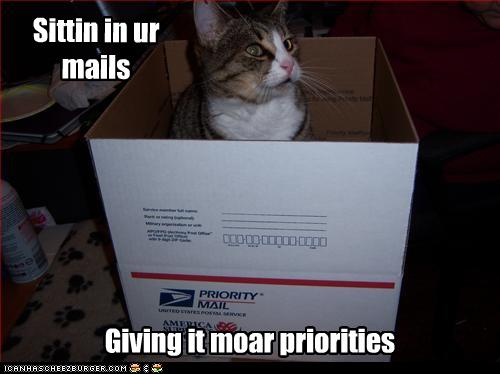 uh43048,1268297501,funny-pictures-cat-sits-in-box