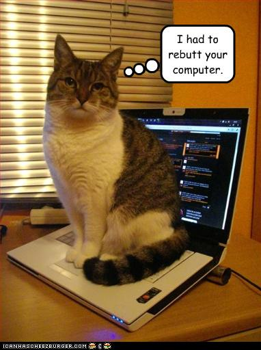 uh43048,1268297520,funny-pictures-cat-sits-on-your-laptop