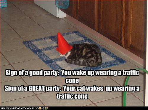 uh43048,1268564664,funny-pictures-cat-wears-cone-on-head