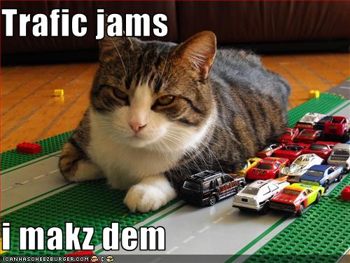 uh43048,1268564729,funny-pictures-cat-makes-traffic-jams