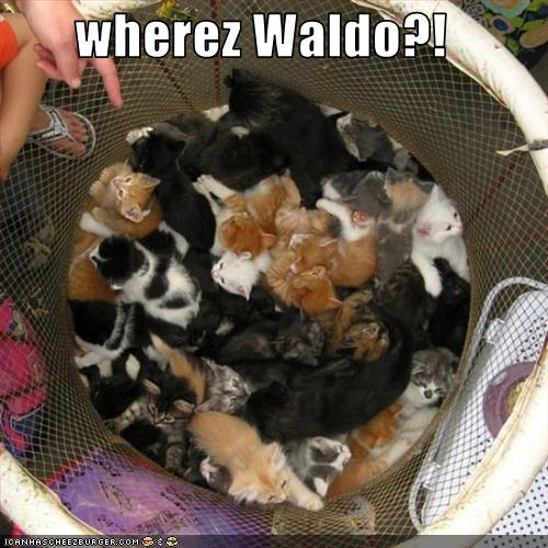 uh43048,1268564920,funny-pictures-where-is-waldo