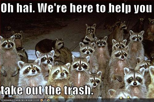 uh43048,1270494339,funny-pictures-raccoons-are-here-to-help-you