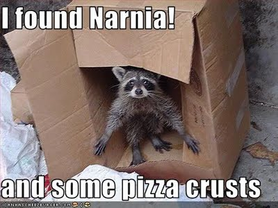 uh43048,1270495980,funny-pictures-raccoon-found-narnia