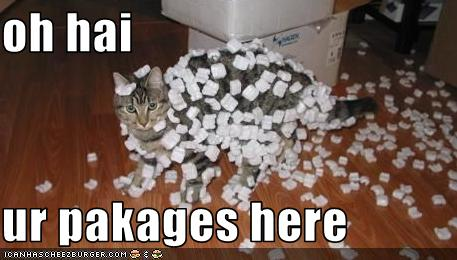 uh43048,1271324642,funny-pictures-cat-has-packing-peanuts