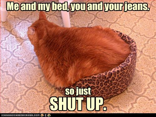 uh43048,1271324709,funny-pictures-cat-is-too-big-for-bed