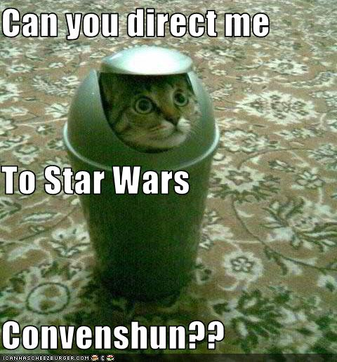 uh43048,1271324779,funny-pictures-cat-goes-to-convention
