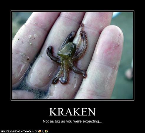 uh43048,1272285131,funny-pictures-kraken-is-small