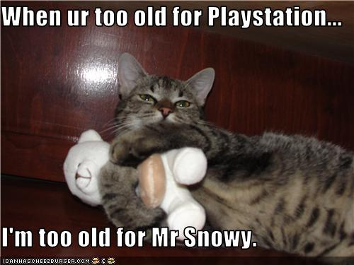 uh43048,1272285197,funny-pictures-cat-is-not-too-old